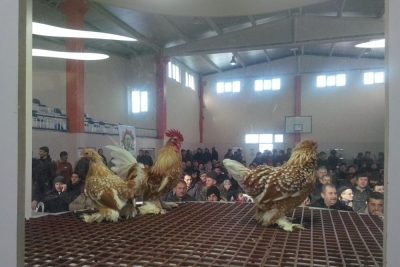 Müşerref-muzaffer Samda Ortaokulu Fotoğrafları 1