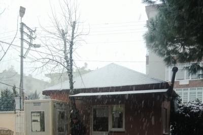 Mudanya Anadolu İmam Hatip Lisesi Fotoğrafları 1