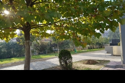 Nilüfer Çamlıca Anadolu Lisesi Fotoğrafları 2