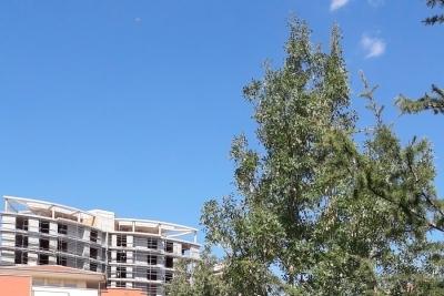 Orhangazi Anadolu Lisesi Fotoğrafları 1
