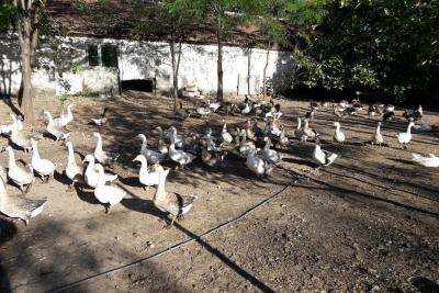 Osmangazi Hamidiye Mesleki Ve Teknik Anadolu Lisesi Fotoğrafları 2