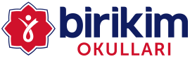 Özel Sancaktepe Birikim Okulları Fen Lisesi Logosu